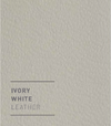 Swatch - Ivory White.png